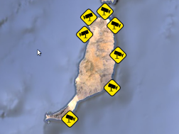 All the webcams in Fuerteventura